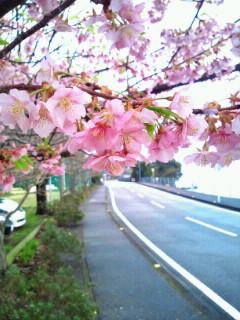 image/2012-03-22T14:20:57-1.jpg