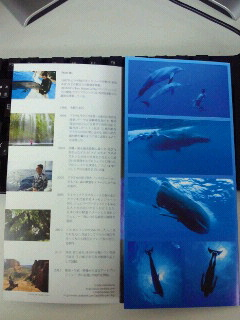 image/2012-12-12T18:49:56-1.jpg